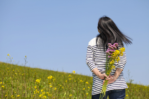 春の写真素材 [FYI00038279]