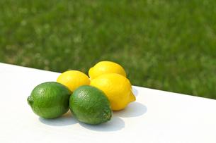ライムとレモンの素材 [FYI00038284]