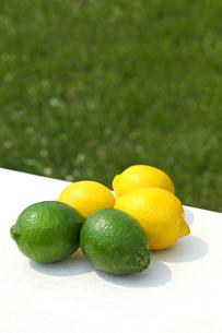 ライムとレモンの素材 [FYI00038330]