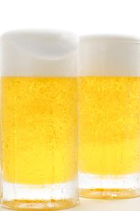 生ビールの写真素材 [FYI00038559]