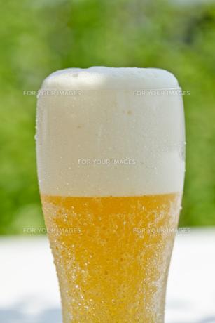 ビールの写真素材 [FYI00038565]