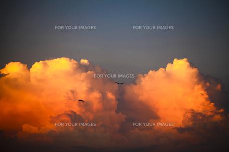夕焼けの入道雲の写真素材 [FYI00038604]