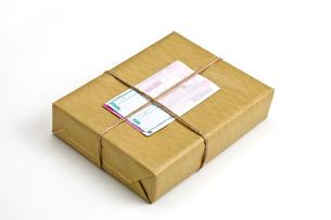 小包の素材 [FYI00038719]