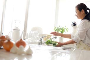 キッチンの女性と猫の写真素材 [FYI00038893]