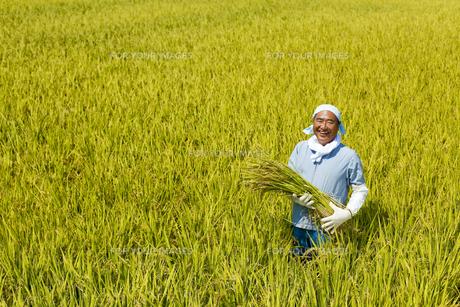 農業の素材 [FYI00038946]