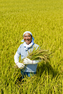 農業の素材 [FYI00038958]