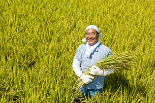 農業の素材 [FYI00038992]