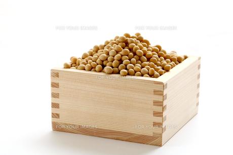 大豆の素材 [FYI00039199]