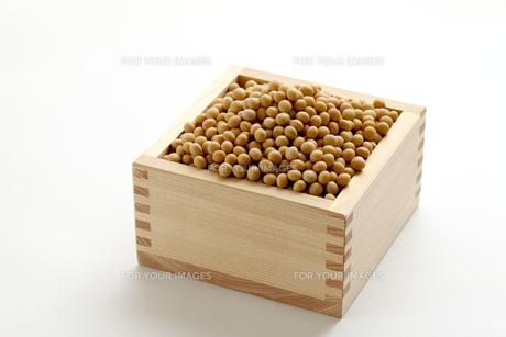 大豆の素材 [FYI00039204]