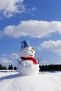 雪だるまの素材 [FYI00039285]