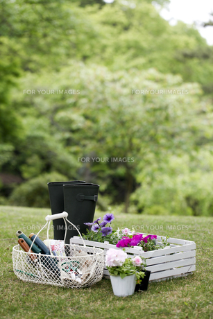 園芸道具の素材 [FYI00039697]