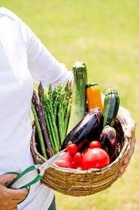 野菜収穫の素材 [FYI00039813]