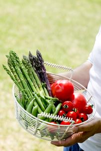 野菜収穫の素材 [FYI00039825]