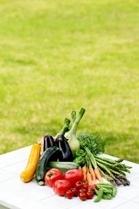 野菜の収穫の写真素材 [FYI00039826]