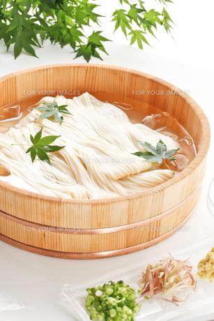 素麺の写真素材 [FYI00040025]