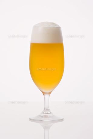 ビールの写真素材 [FYI00040285]