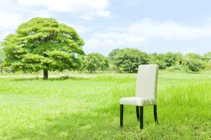 公園と椅子の写真素材 [FYI00040366]