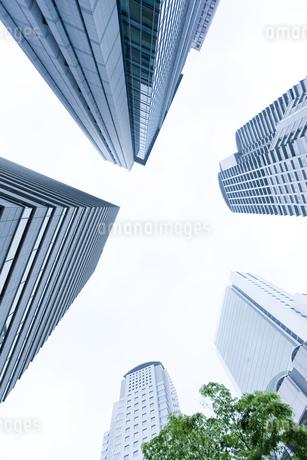 高層ビルの写真素材 [FYI00040371]