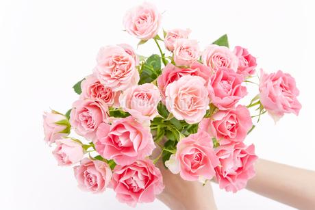 薔薇の花束の写真素材 [FYI00040386]