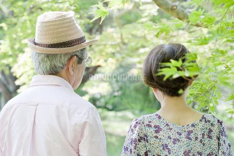 散歩する老夫婦の写真素材 [FYI00041043]