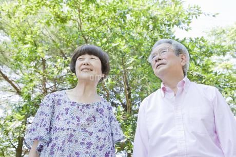 散歩する老夫婦の写真素材 [FYI00041058]