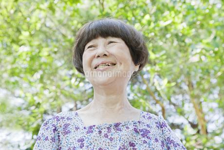 笑顔の老人女性の写真素材 [FYI00041068]