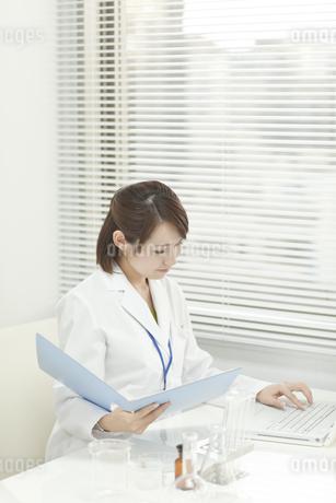 パソコンに入力する女性研究員の写真素材 [FYI00041252]
