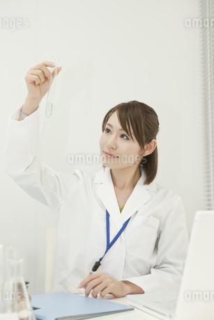 試験管を見つめる女性研究員の写真素材 [FYI00041254]