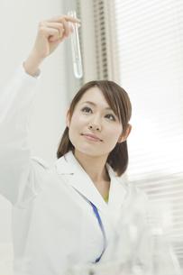 試験管を見つめる女性研究員の写真素材 [FYI00041260]