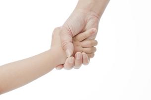 手を繋ぐ親子の写真素材 [FYI00041365]