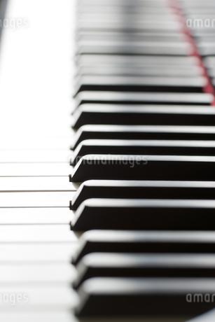 ピアノの鍵盤の写真素材 [FYI00041375]