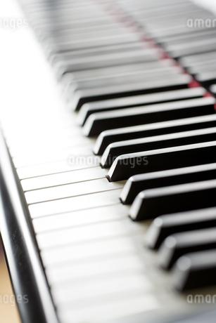 ピアノの鍵盤の写真素材 [FYI00041387]