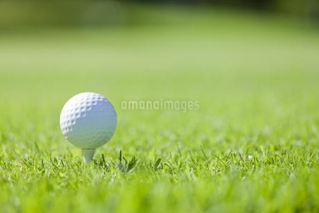 ゴルフボールの写真素材 [FYI00041388]