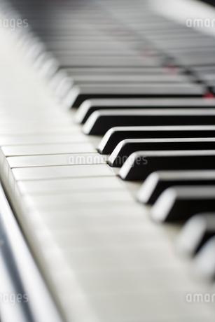ピアノの鍵盤の写真素材 [FYI00041389]