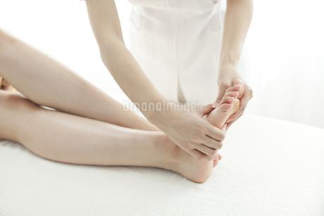 足をマッサージするエステティシャンの写真素材 [FYI00041448]