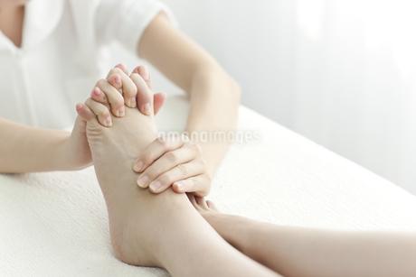 足をマッサージするエステティシャンの写真素材 [FYI00041455]