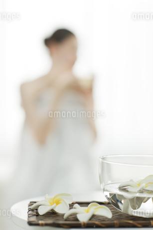 プルメリアの花の写真素材 [FYI00041609]