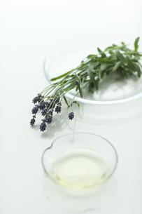 ラベンダーの花とアロマオイルの写真素材 [FYI00041620]