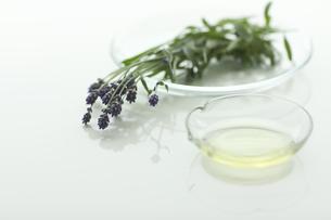 ラベンダーの花とアロマオイルの写真素材 [FYI00041630]