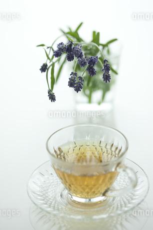 ラベンダーの花とハーブティーの写真素材 [FYI00041634]