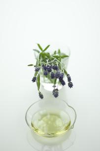 ラベンダーの花とアロマオイルの写真素材 [FYI00041637]