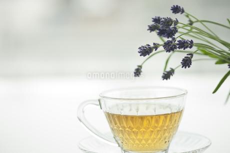 ラベンダーの花とハーブティーの写真素材 [FYI00041640]