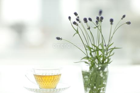 ラベンダーの花とハーブティーの写真素材 [FYI00041644]