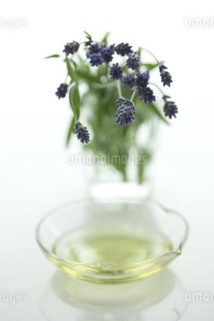 ラベンダーの花とアロマオイルの写真素材 [FYI00041645]