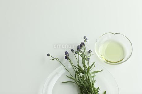 ラベンダーの花とアロマオイルの写真素材 [FYI00041647]