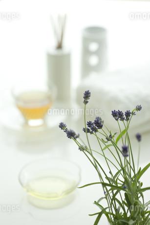 ラベンダーの花とアロマオイルの写真素材 [FYI00041652]