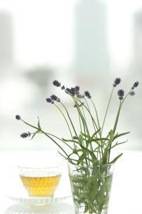 ラベンダーの花とハーブティーの写真素材 [FYI00041654]
