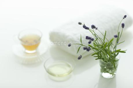 ラベンダーの花とアロマオイルの写真素材 [FYI00041657]