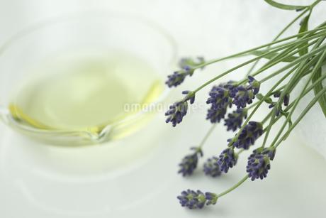 ラベンダーの花とアロマオイルの写真素材 [FYI00041660]