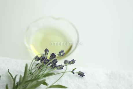 ラベンダーの花とアロマオイルの写真素材 [FYI00041676]